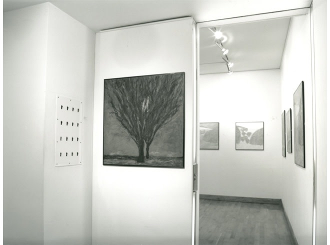 """<span class=""""link fancybox-details-link""""><a href=""""/exhibitions/182/works/image_standalone836/"""">View Detail Page</a></span><p>JOHN D. EDWARDS   RECENT WORK   14 SEP - 27 OCT 1995   Installation View</p>"""