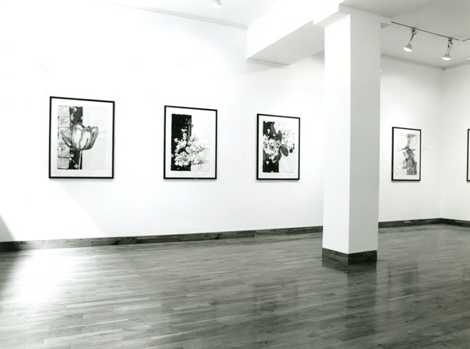 """<span class=""""link fancybox-details-link""""><a href=""""/exhibitions/202/works/image_standalone949/"""">View Detail Page</a></span><p>ROBERT KUSHNER 