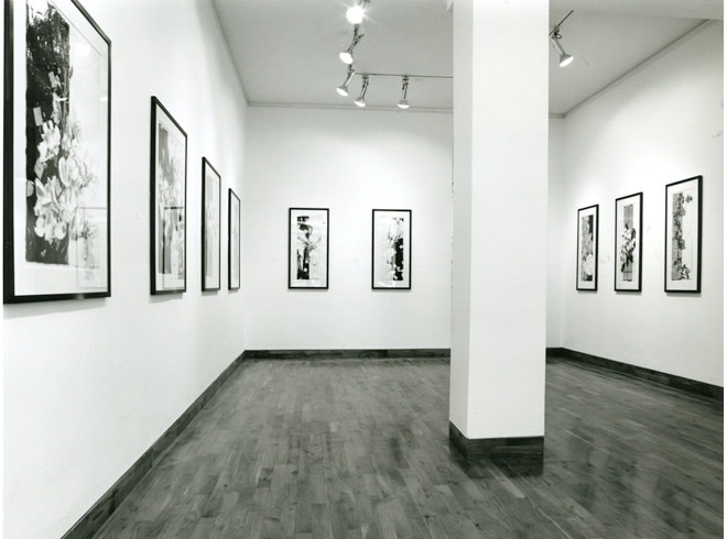 """<span class=""""link fancybox-details-link""""><a href=""""/exhibitions/202/works/image_standalone950/"""">View Detail Page</a></span><p>ROBERT KUSHNER 