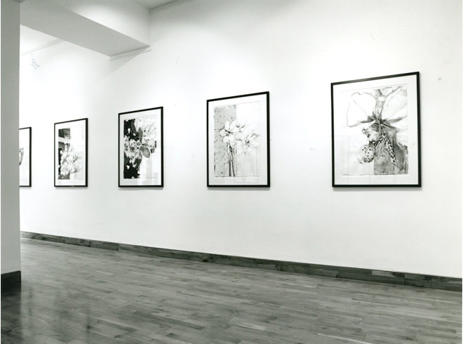 """<span class=""""link fancybox-details-link""""><a href=""""/exhibitions/202/works/image_standalone951/"""">View Detail Page</a></span><p>ROBERT KUSHNER 