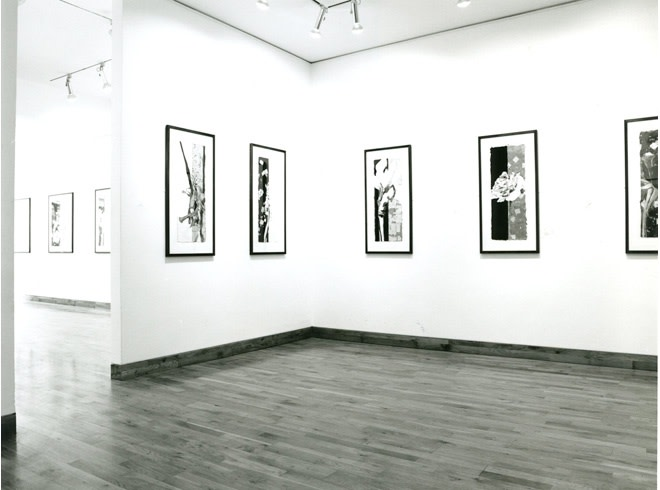 """<span class=""""link fancybox-details-link""""><a href=""""/exhibitions/202/works/image_standalone953/"""">View Detail Page</a></span><p>ROBERT KUSHNER 