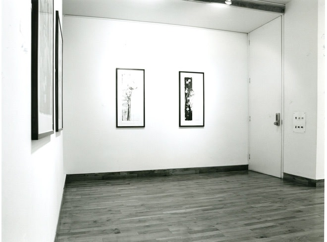 """<span class=""""link fancybox-details-link""""><a href=""""/exhibitions/202/works/image_standalone954/"""">View Detail Page</a></span><p>ROBERT KUSHNER 