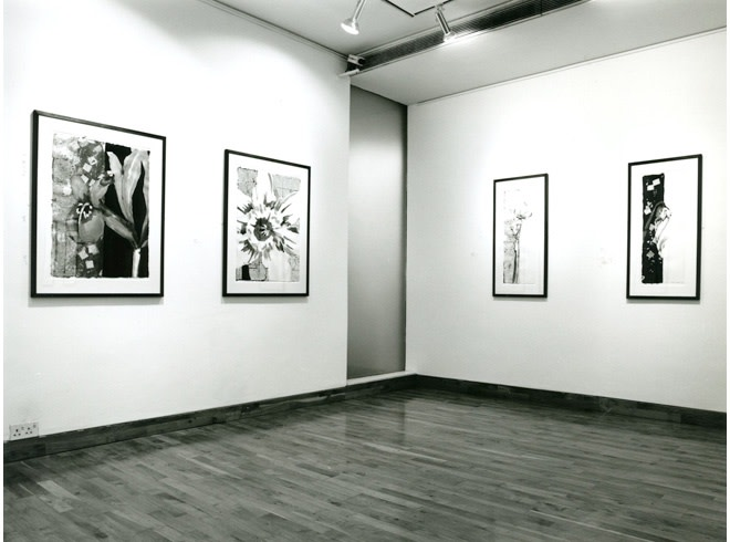 """<span class=""""link fancybox-details-link""""><a href=""""/exhibitions/202/works/image_standalone955/"""">View Detail Page</a></span><p>ROBERT KUSHNER 