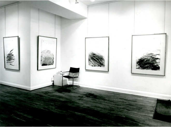 """<span class=""""link fancybox-details-link""""><a href=""""/exhibitions/264/works/image_standalone1367/"""">View Detail Page</a></span><p>CY TWOMBLY 