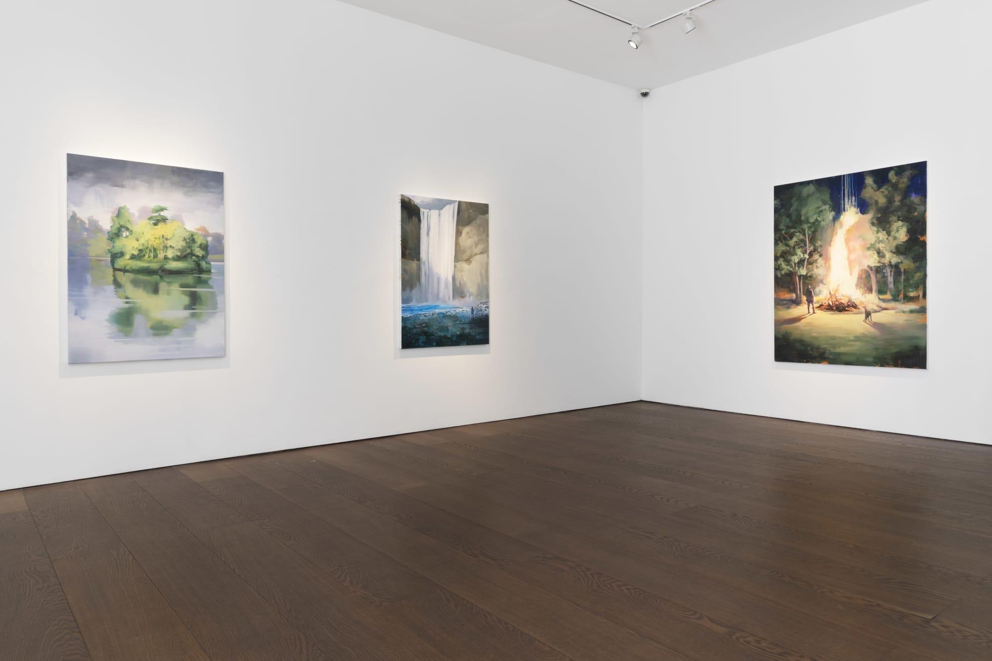 Tai Shan Schierenberg Figuring the Landscape