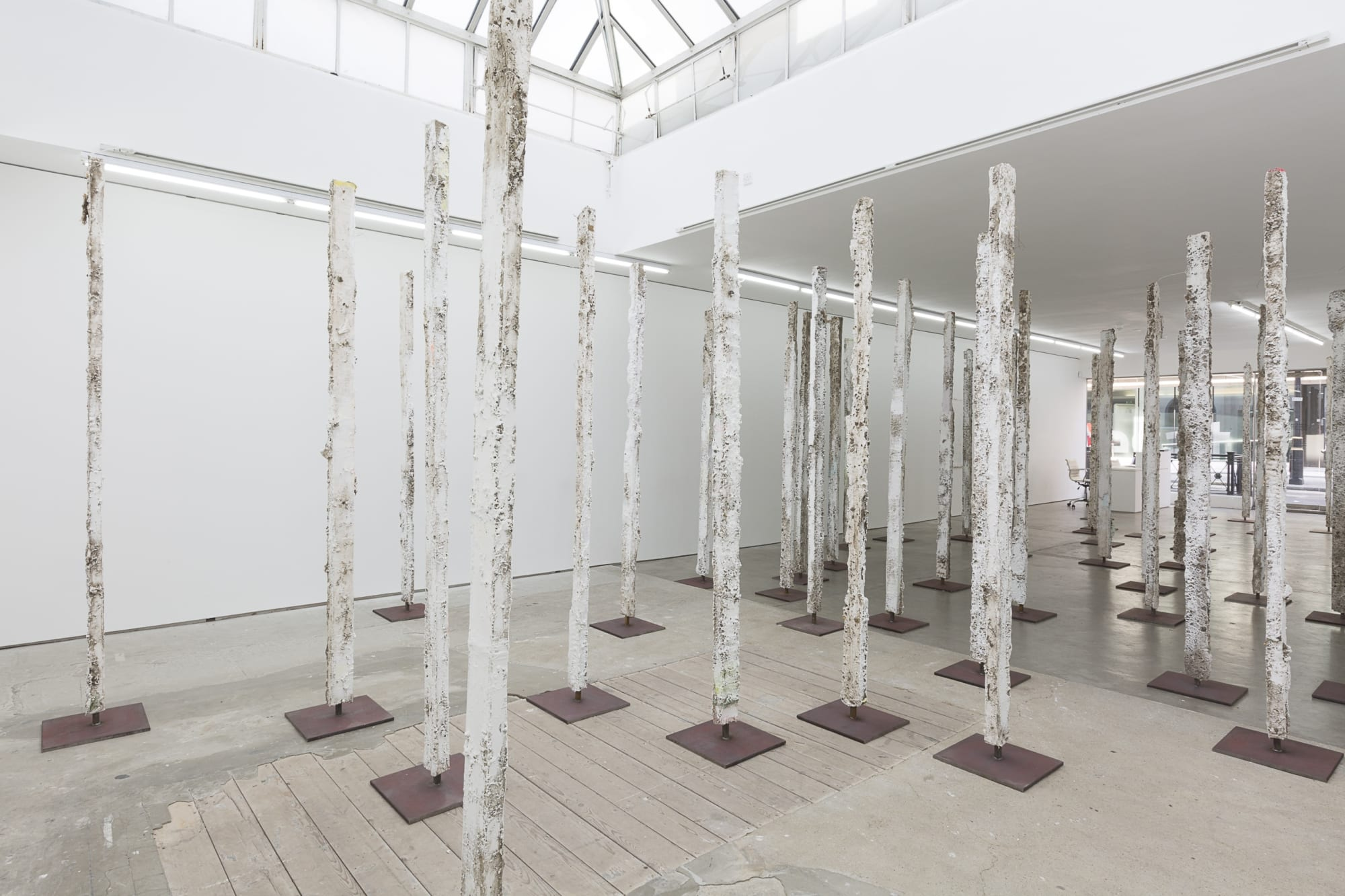Jodie Carey: Earthcasts, Installation View, 2017. Edel Assanti.