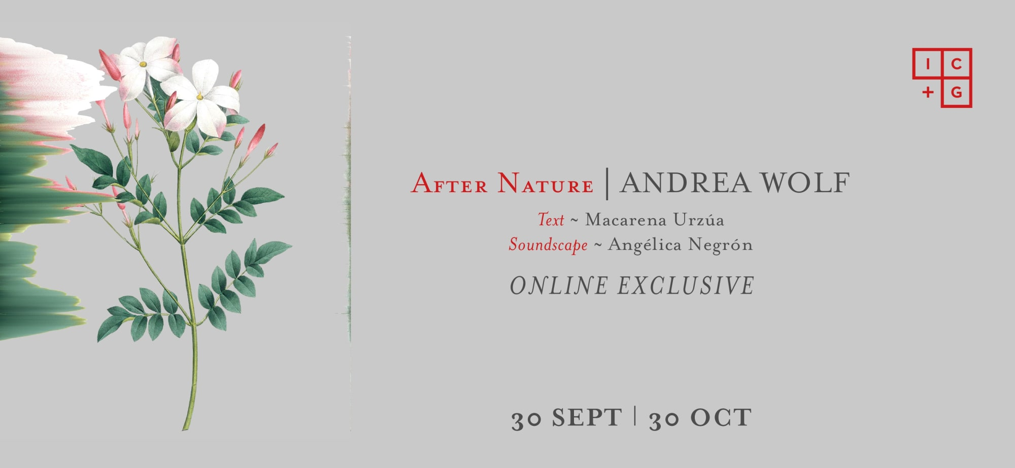 After Nature | Andrea Wolf
