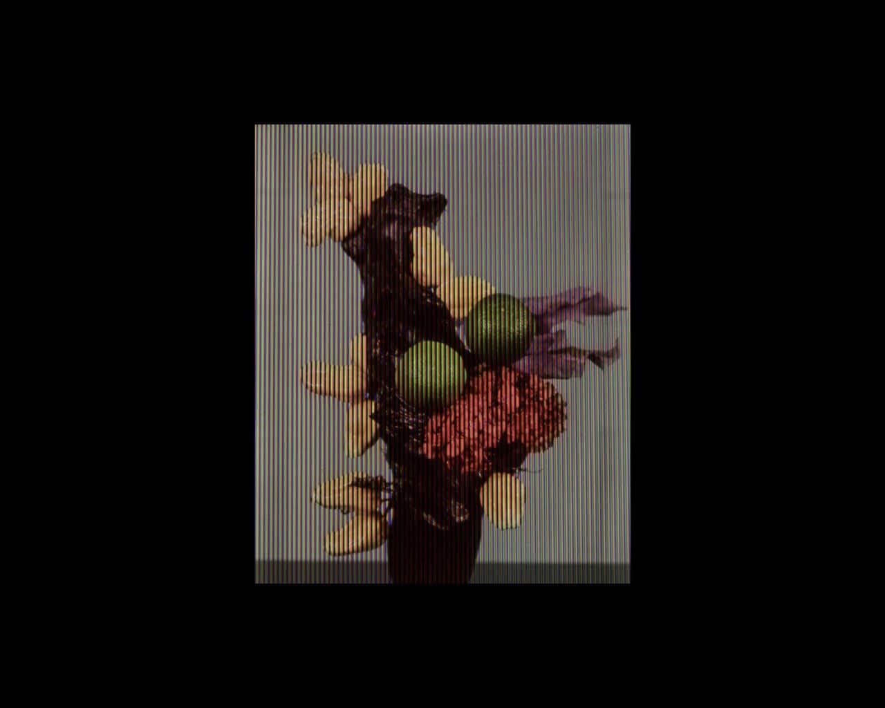 Joly Screen Photographs - Fleurs Tarabiscoté: Alan Phelan