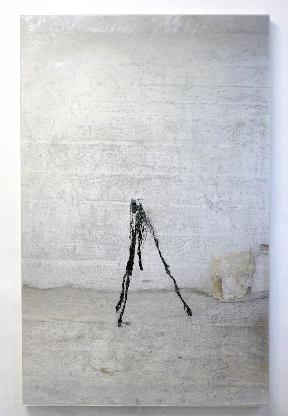Carrie Yamaoka, 72 by 45 (wall), 2016
