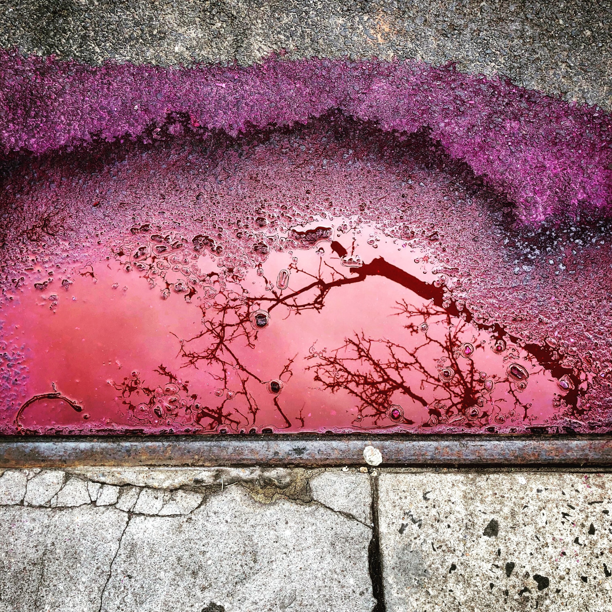 Cindy Kleine, Pink Puddle, 2019