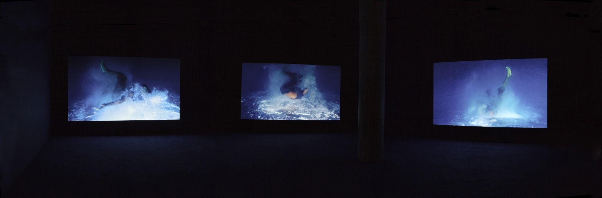 Currents 34: Isaac Julien. Milwaukee Art Museum, 2013