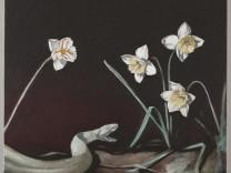 The Daffodils, 2012
