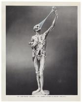 MUSÉE IMAGINAIRE, Plate 648, 2013