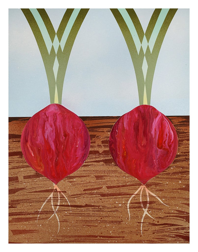Casey Gray, Two Red Onions, 2017
