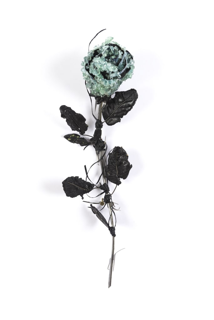 Lucien Shapiro, Rose with Leaves 2, 2017