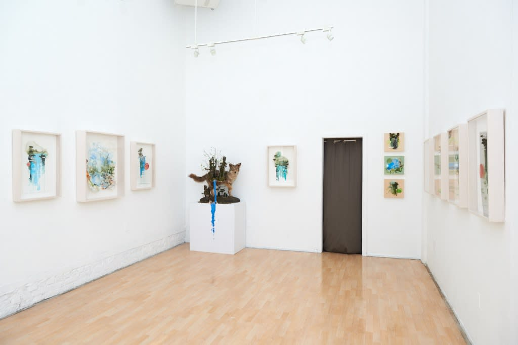 """Gregory Euclide """"Preservation Paradox"""" installation view"""