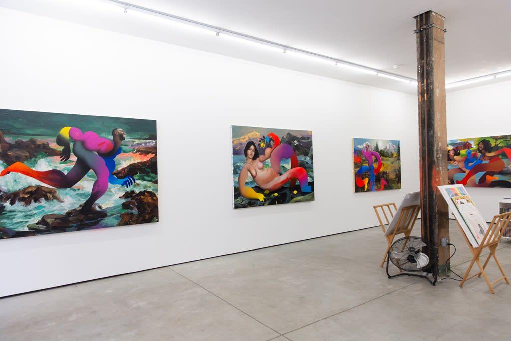 "Erik Jones ""Country"" installation"