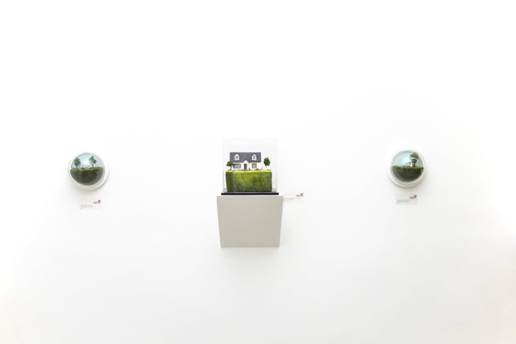 Abigail Goldman installation