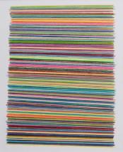 Silvina Arismendi, The Drawing Seasons, 2013
