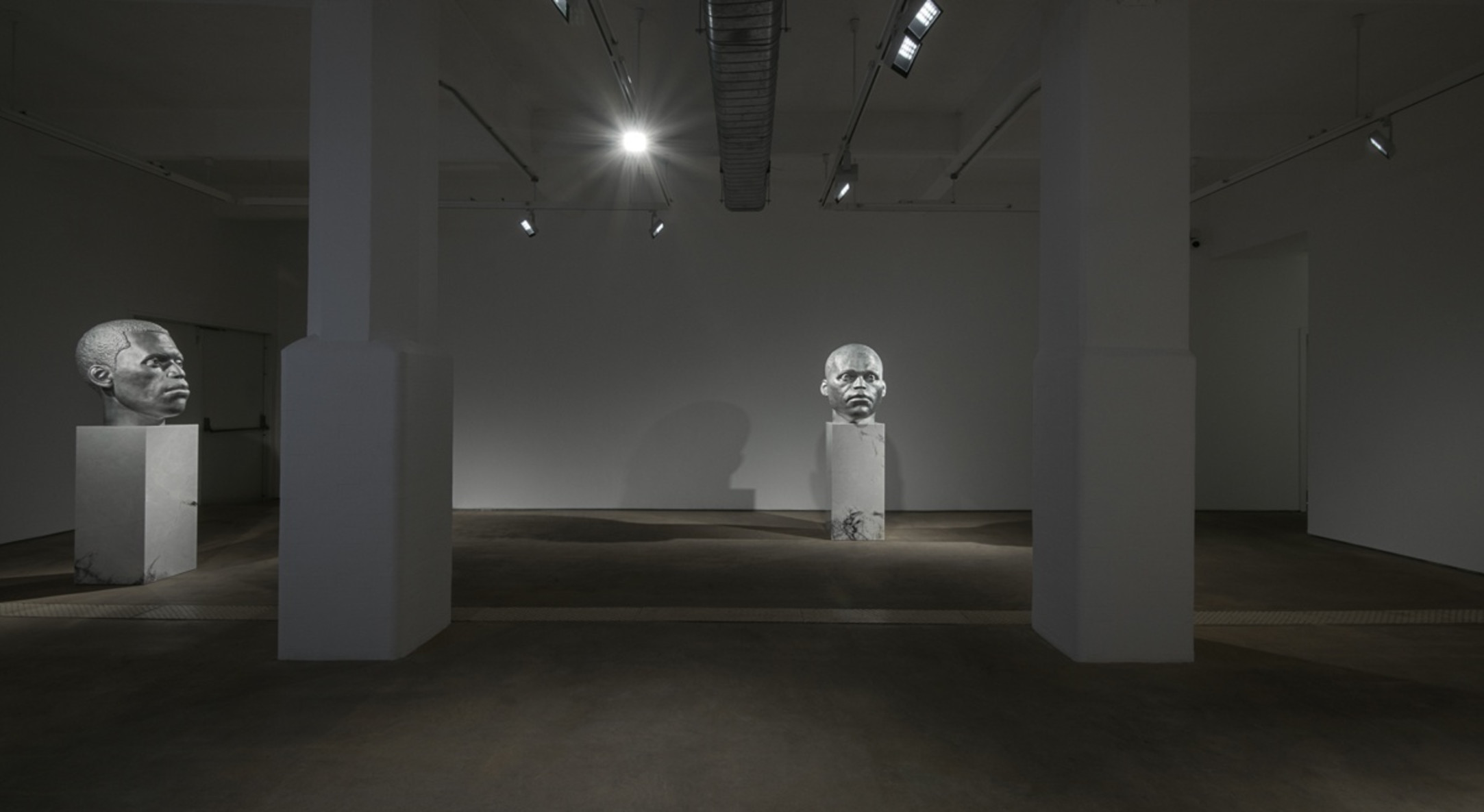 Installation view of Thomas J Price, Worship at Hales London