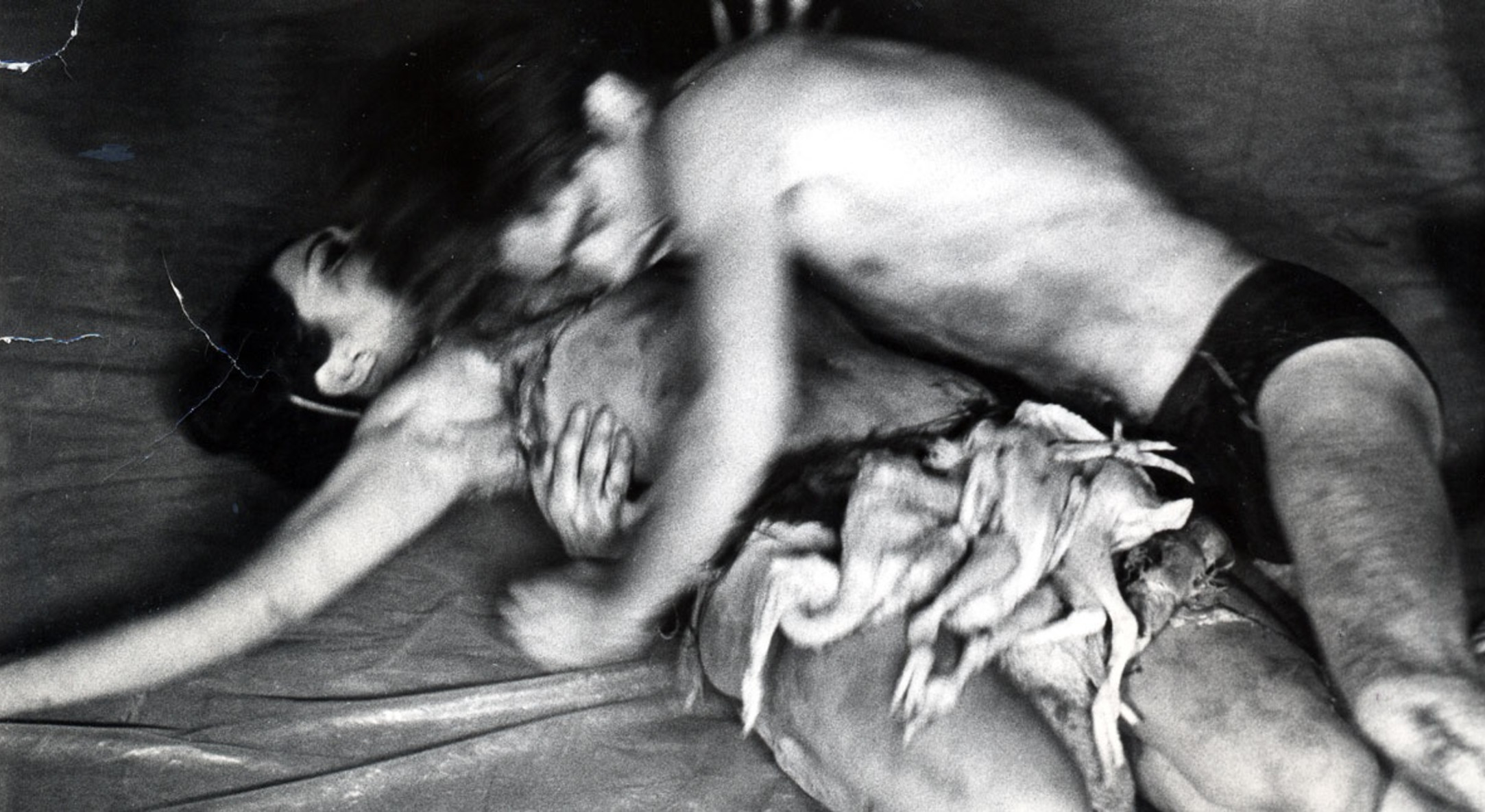 Detail of Carolee Schneemann, Meat Joy, 1964, Silver print, Framed: 23 3/4 x 20 1/4 in, 60.3 x 51.4 cm