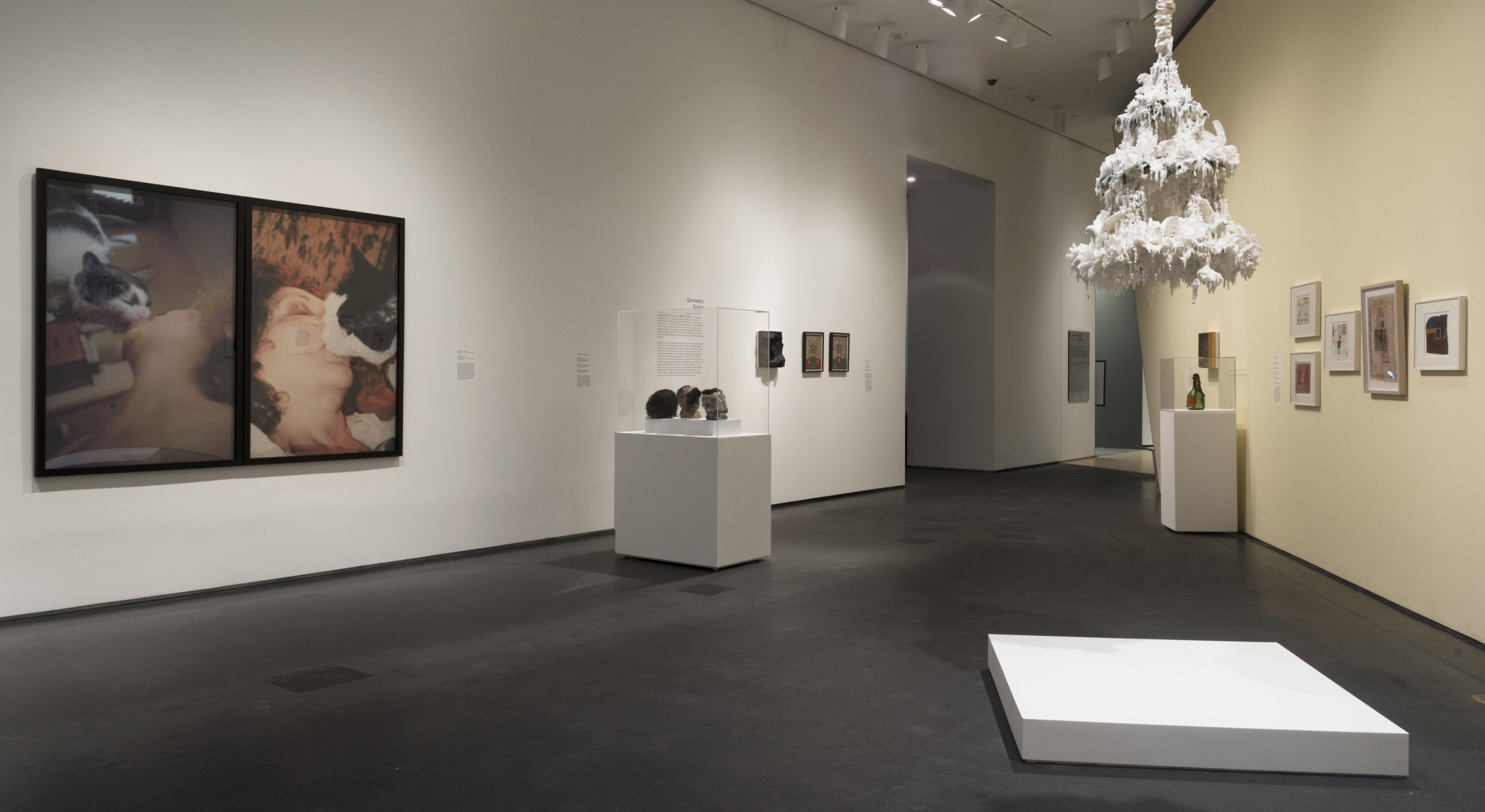 Installation view of Carolee Schneemann in Out of Place: A Feminist Look at the Collection at Brooklyn Museum, 2020