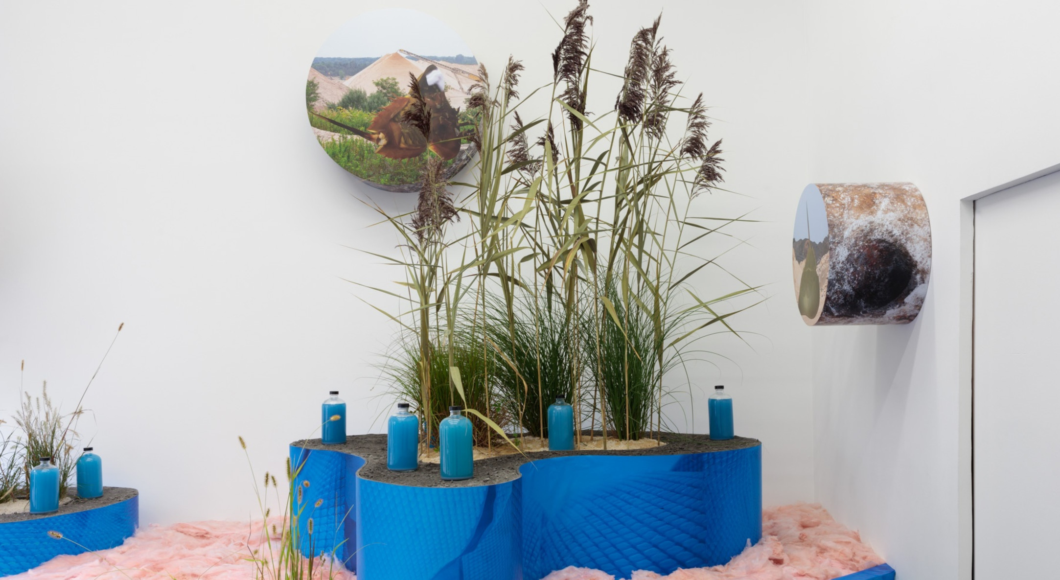 Installation view of Rachael Champion New York Interstate 495 Is A Terminal Moraine, Hales Project Room NYC, 2018