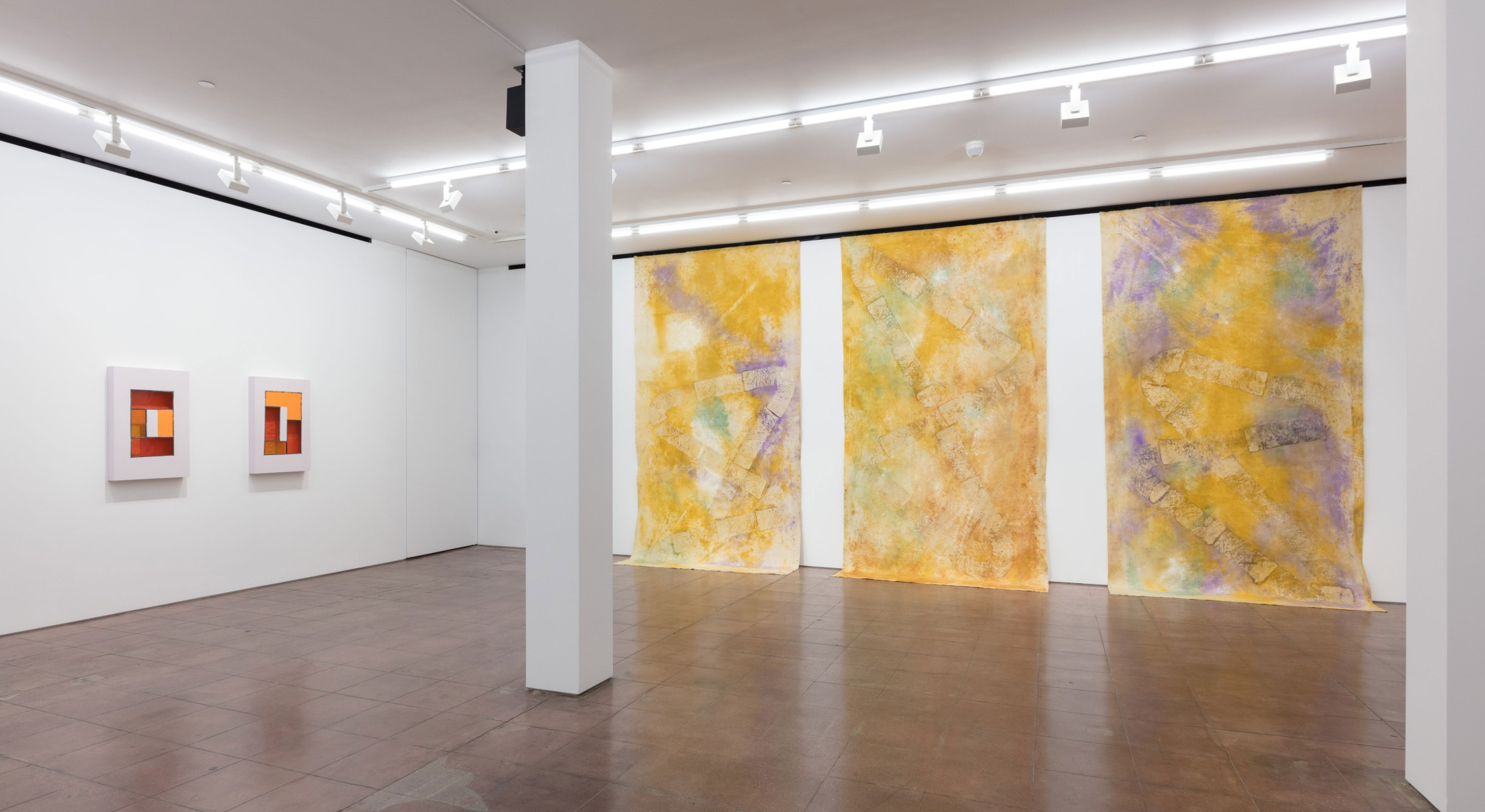 Installation view of Jessica Warboys, Snake Shape Lake, at Hales New York