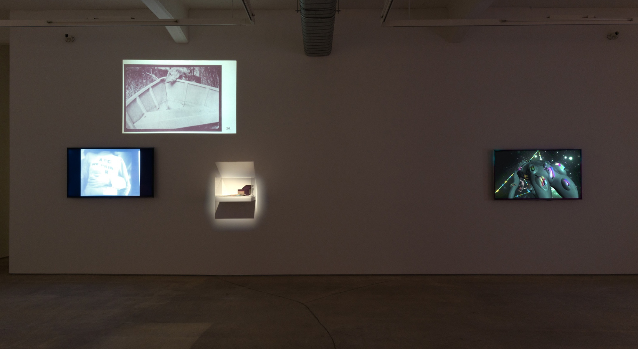 Installation view of Go Stand Next to the Mountain, Derrick Adams, Elijah Burgher, Howardena Pindell, Hunter Reynolds, Jacolby Satterwhite, Carolee Schneemann, David Wojnarowicz, at Hales Gallery London, 2015