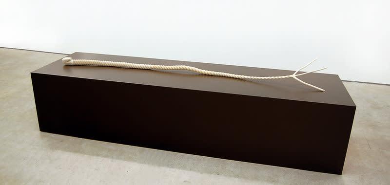 Jane Wilbraham, Seven Month Frail, 2009-2010, sycamore, 244 x 30 x 30 cm, 96.14 x 11.82 x 11.82 in