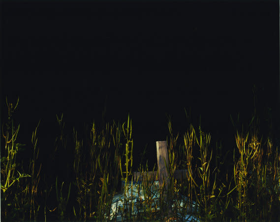 Trevor Appleson, Blue/ grass (grave), 2007, C-Type print, 113 x 146.1 cms, 44.52 x 57.56 inches