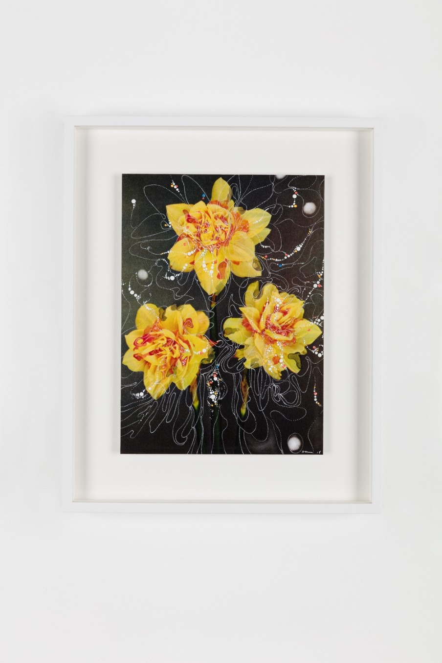 Sebastiaan Bremer, Double Narcissus Texas Mark, 2018, Archival inkjet pigment print on resin coated paper with hand additions in acrylic, photo retouch dye, and pigment pen, 27.9 x 20.3 cm, 11 x 8 in, Framed: 38.6 x 31.1 x 3.7 cm, 15 1/4 x 12 1/4 x 1 1/2