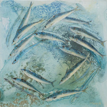 Catherine Forshall, 'Mackerel, estuary'