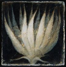 Peter White, Flower 11