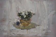 Richard Colson, White Azalea