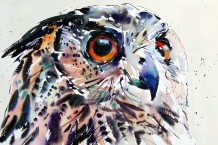 "Jake Winkle Born 1964EYE OF THE EAGLE OWL Signed: J Winkle Watercolour 19"" x 28"""