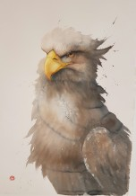 "Karl Martens  Born 1956HEAD STUDY - WHITE TAILED SEA EAGLE  Watercolour  39"" x 57"""