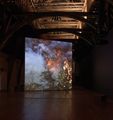 David Claerbout, Wildfire (meditation on fire) 2019-2020