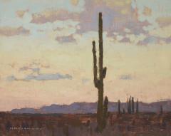 David Grossmann, Saguaro Sunrise