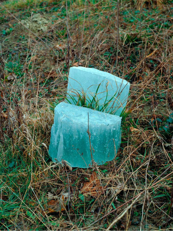 Giuseppe Penone, Split tree stump, 1995