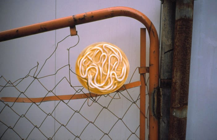 Gabriel Orozco, Noodles in the Fence, 2000