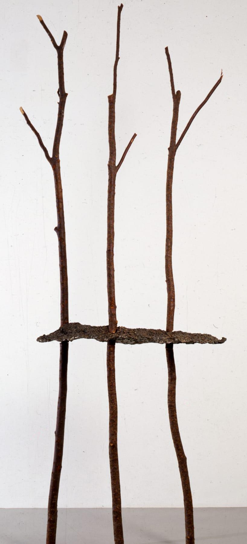 Giuseppe Penone, Soffio ('Breath'), 1990