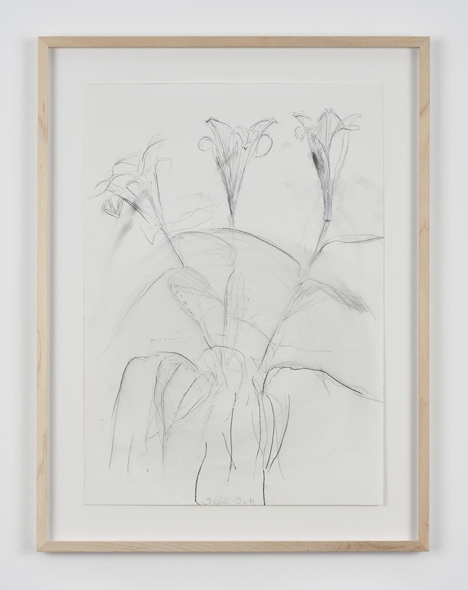 Sabine Moritz, Lily 60, 2019