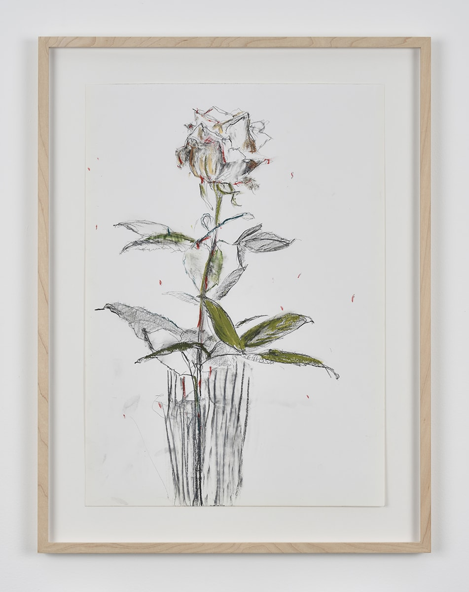Sabine Moritz, Rose 51, 2019
