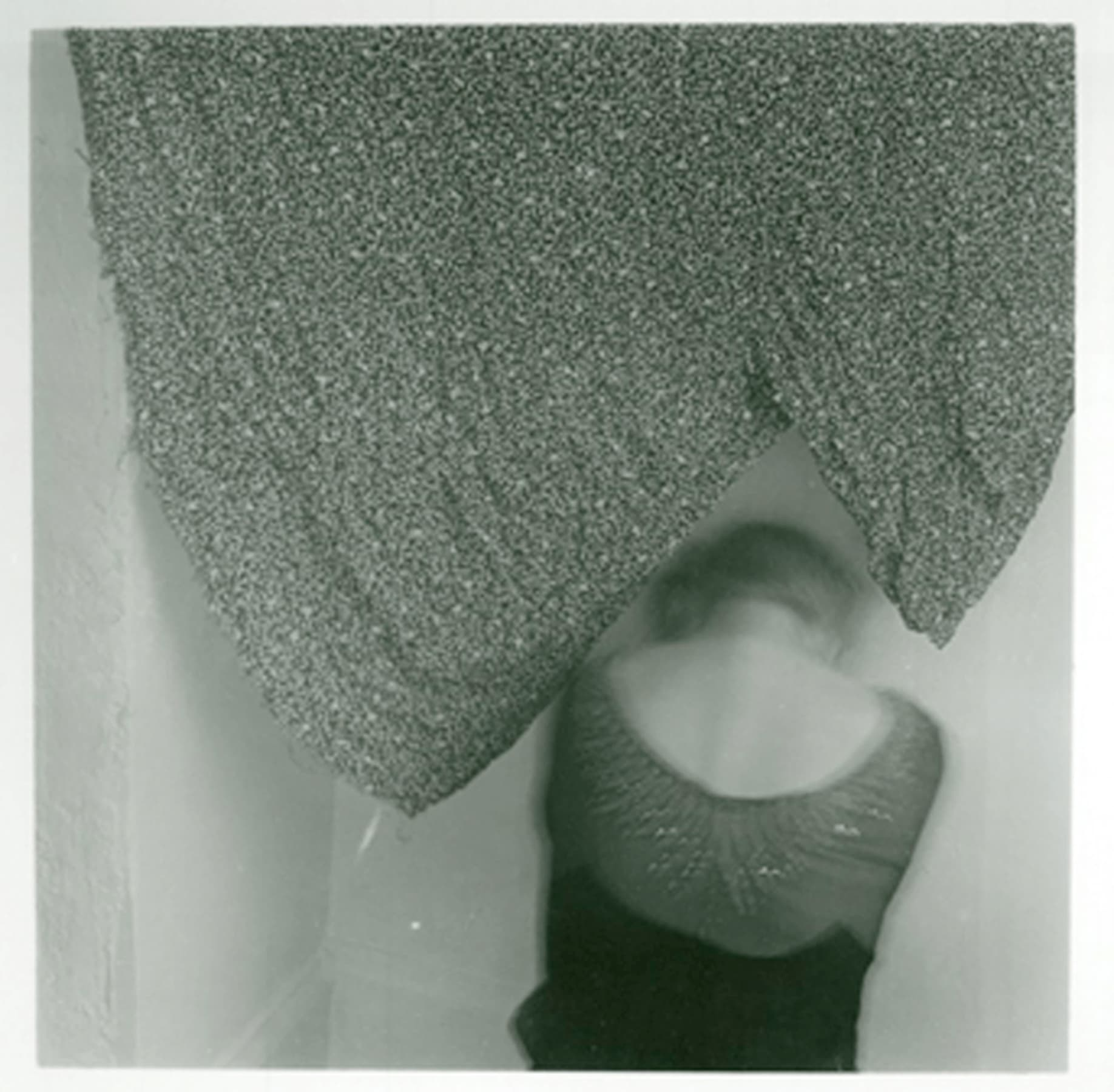 Francesca Woodman The Blueprints