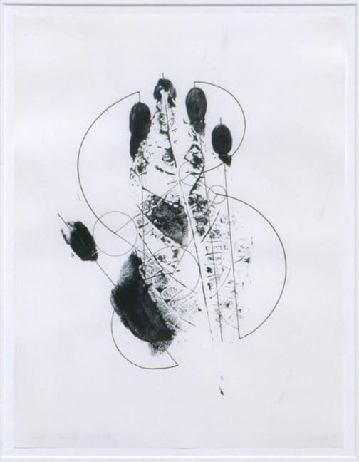 Gabriel Orozco, Fear Not, 2001