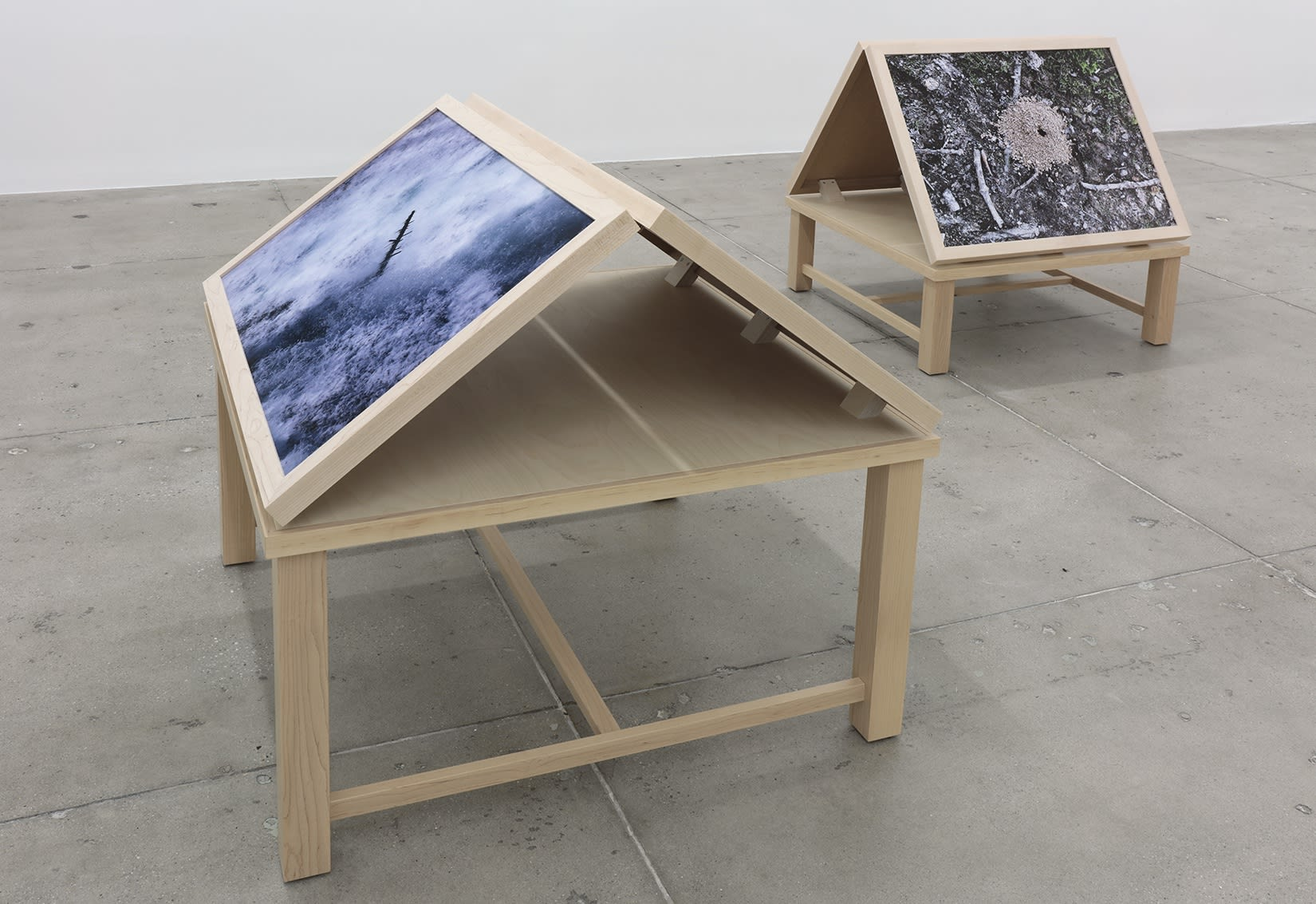 Two wooden stands on a concrete floor display color photographs; on the left, one of rushing water and on the right, an ant hill.