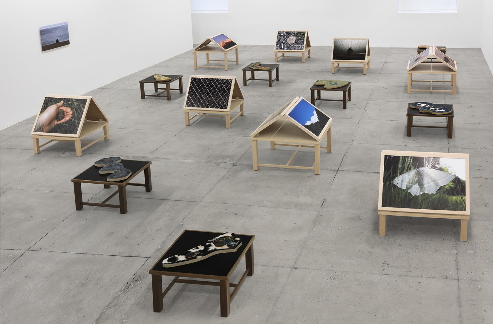 15 wooden platforms display photographs of nature and flat sculptures on a concrete floor. A beach photograph hangs on a white wall.