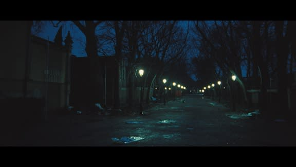 Street lamps and trees line an empty, dark street at night; the sky is dark turquoise.