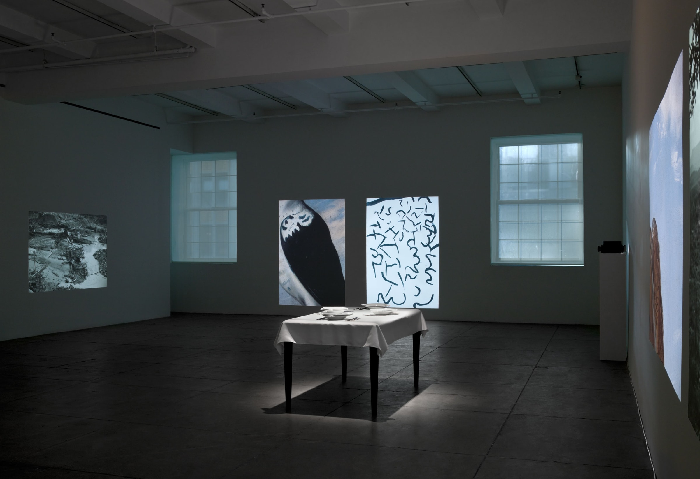 A dining table with a table cloth and white plates in the middle of the room is surrounded by large projections of black-and-white landscapes, birds, feather-like patterns and the sky.